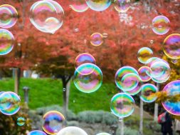 feature-bubbles