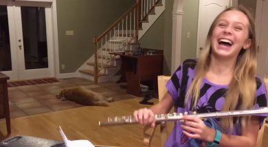 feature-unimpressed-dog-flute