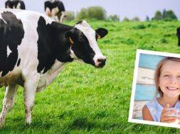 dairy-2