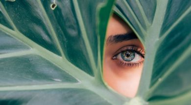 eyethroughleaves.jpg