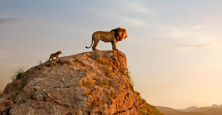 A Scene from The Lion King 2019